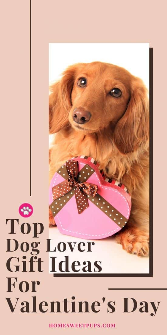 Dog Lover gift ideas for valentine's day