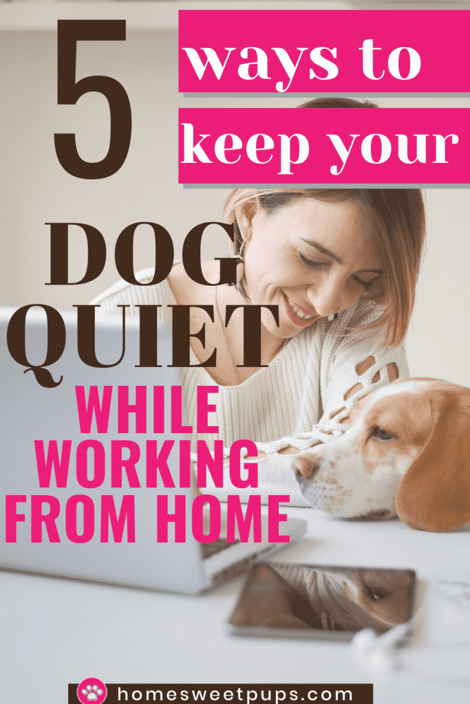 Woman working at home trying to keep her dog quiet.