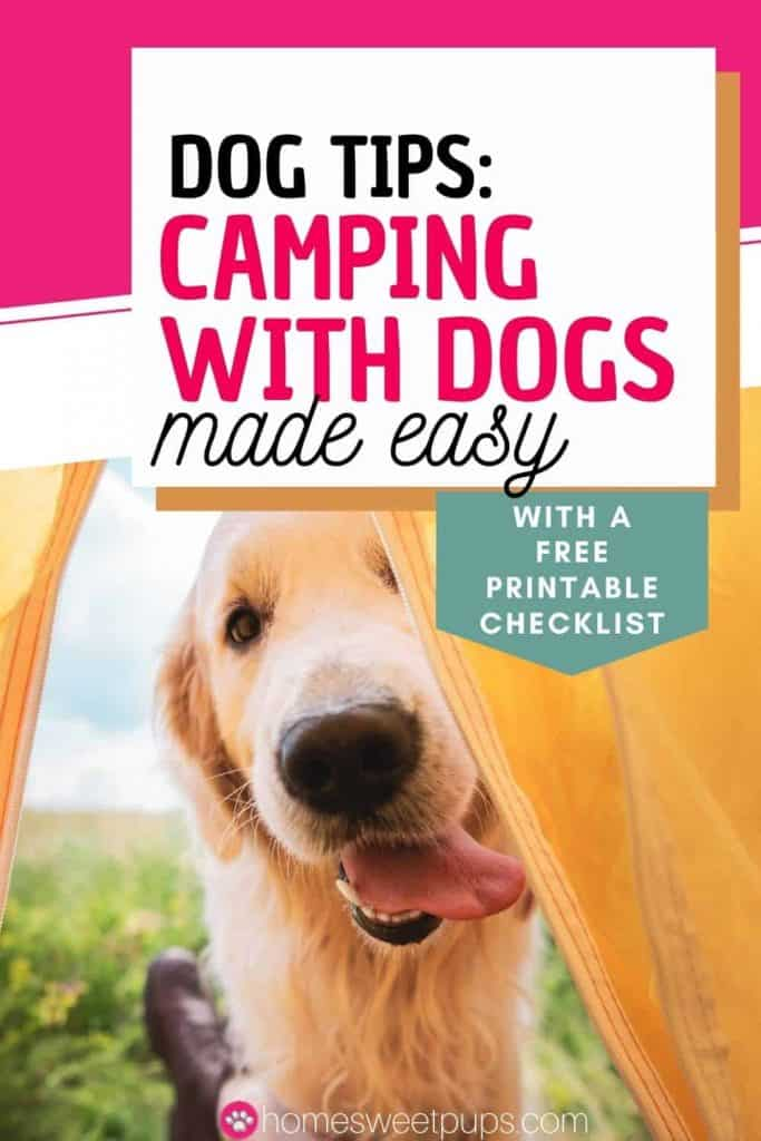 Camping With Dogs made easy