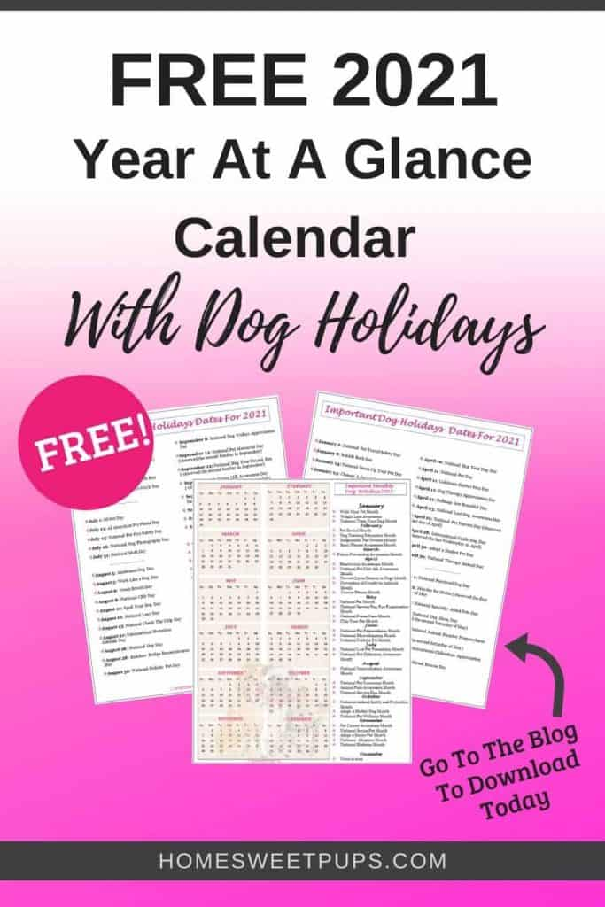 free year at a glance calendar with dog holidays